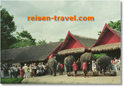 Luxusurlaub Thailand Bangkok Urlaub