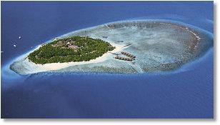 Screenshot: Fihalhohi Island Resort, Süd Male Atoll, Malediven Reisen