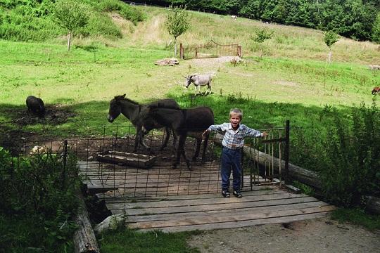 günstig Urlaub Bayerischer Wald Familien mit Kindern  Single mit Kind Fruehling Sommer Herbst Winter Ferien Reisen